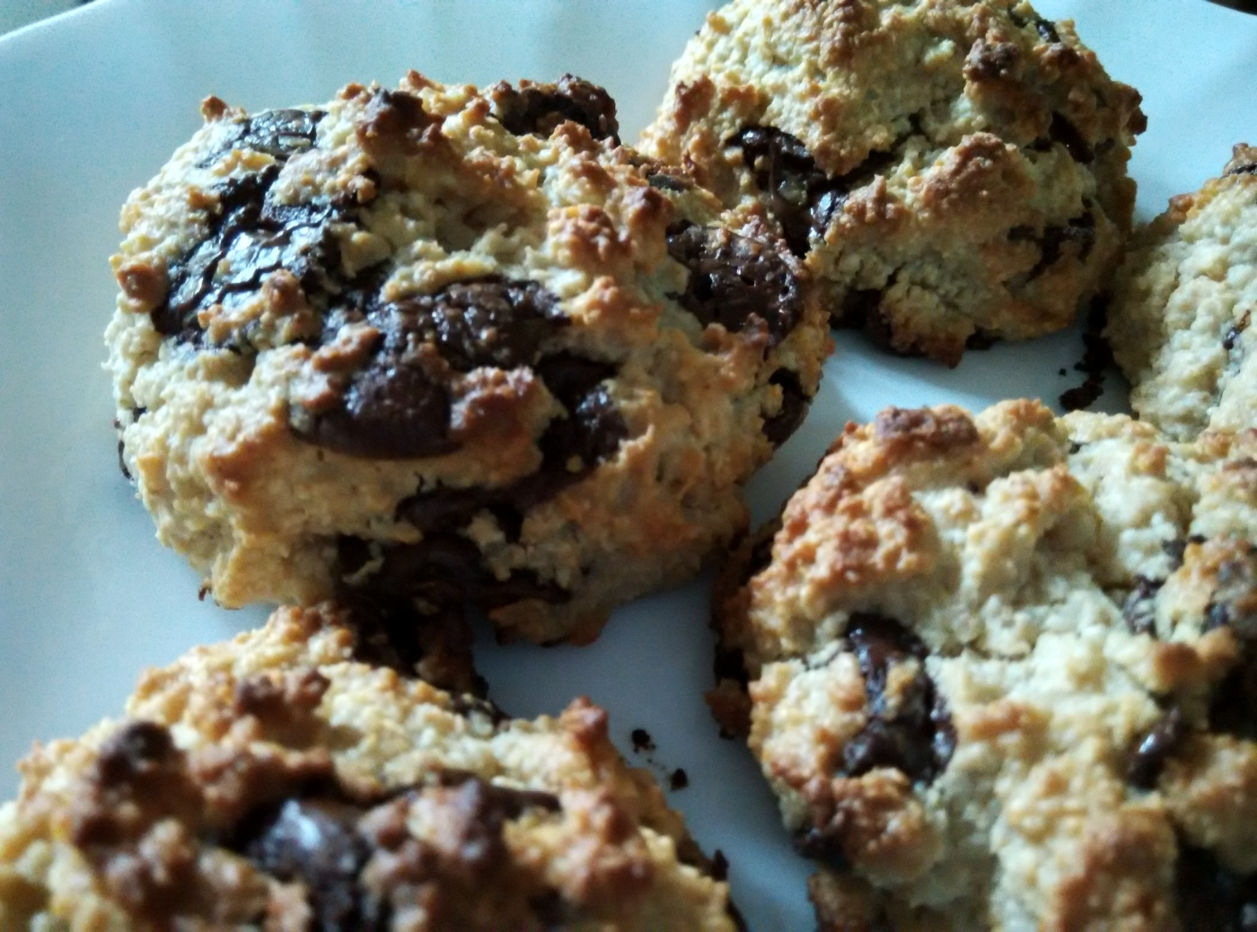 Oaty Chocolate Chip Cookies