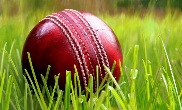 cricket_ball_by_hedgehog_the_hermit_d6sqiom-fullview